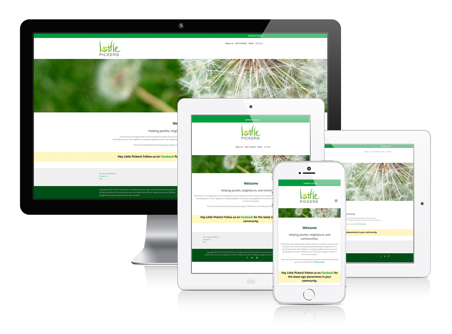 Little Pickers - Responsive Web Design & eCommerce